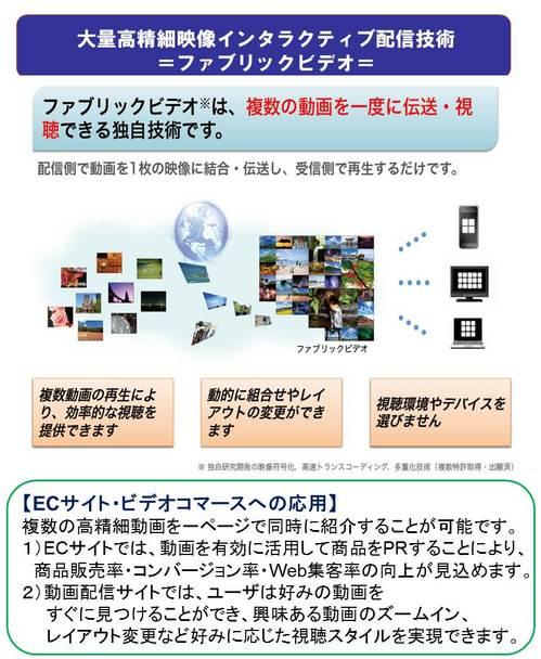 gnzo_gaiyouzu_ec.jpg
