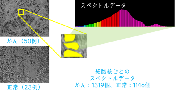 20191104112510.png