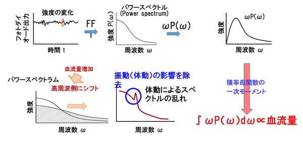 Palmens(血流量信号の算出方法).png
