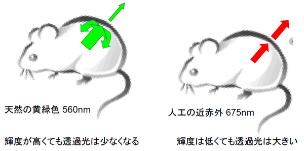 20190116110535.png